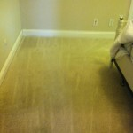 Bedroom Carpet Cleaning Walnut Creek _0499