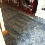 Carpet Cleaning Walnut Creek _6106