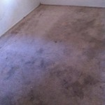 Carpet Cleaning Walnut Creek _6235