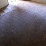 Carpet Cleaning Walnut Creek _6237