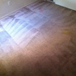 Carpet Cleaning Walnut Creek _6239
