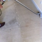 Carpet Cleaning Walnut Creek _6486