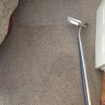 Carpet Cleaning Walnut Creek _7393