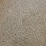 Carpet Cleaning Walnut Creek _7395