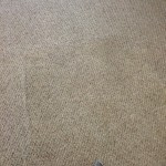 Carpet Cleaning Walnut Creek _7396