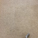 Carpet Cleaning Walnut Creek _7397