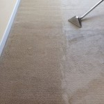 Carpet Cleaning with wand Walnut Creek _6516