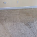 Clean Carpet Walnut Creek _6489