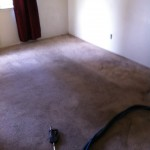 Walnut Creek Carpet Cleaning _6236